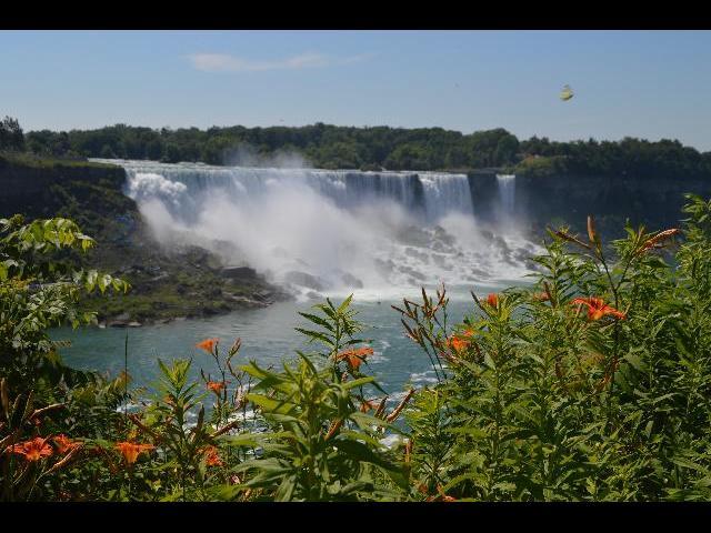 Niagara Falls, New York waterfalls with summer wildflowers as seen from Niagara Falls, Horseshoe Falls, Ontario, Canada