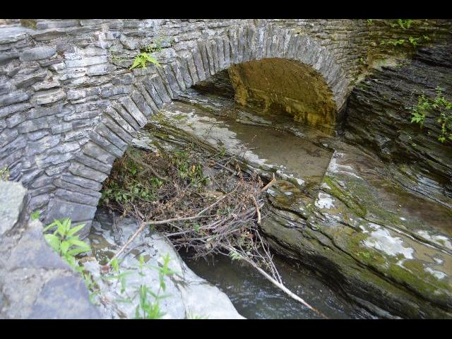 Beaver dam at river in Watkins Glen State Park, Finger Lakes, New York