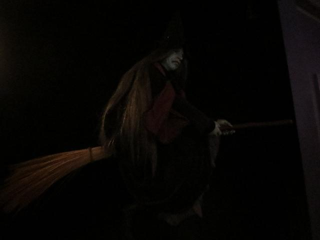 Dark green witch flying on a broom at The Salem Witch Museum in Salem, Massachusetts, USA