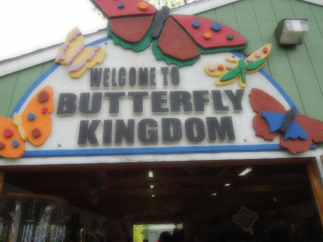 At York Beach's Wild Kingdom