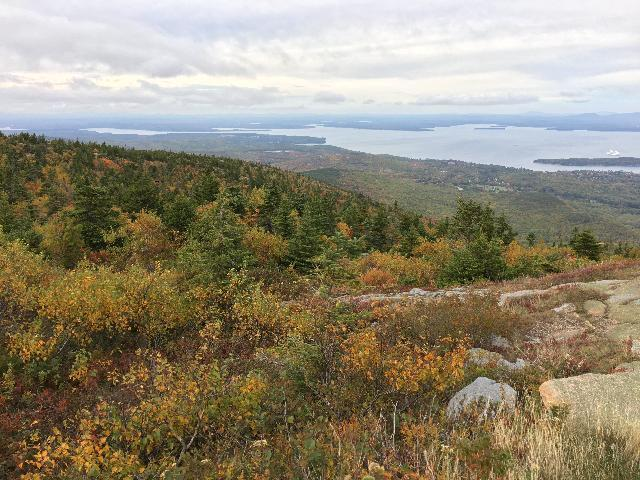 Cadillac mountain in Fall