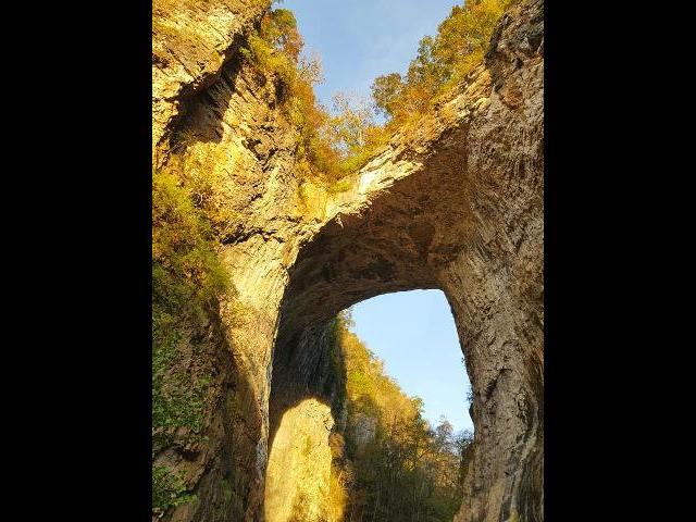 Limestone gorge at Natural Bridge.