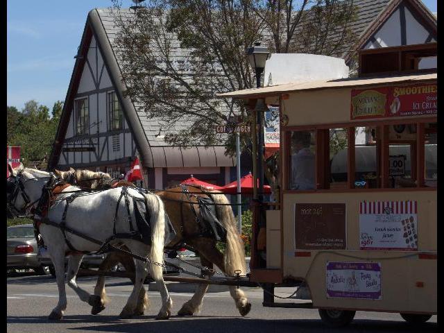 Horse Cart @ Danish Village