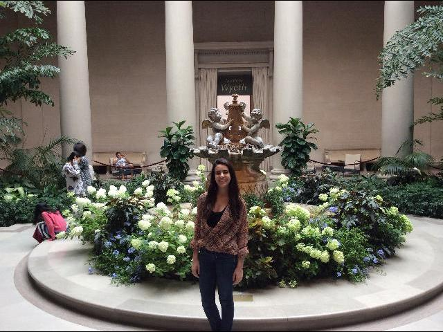 garden in the Smithsonian Museum of Art