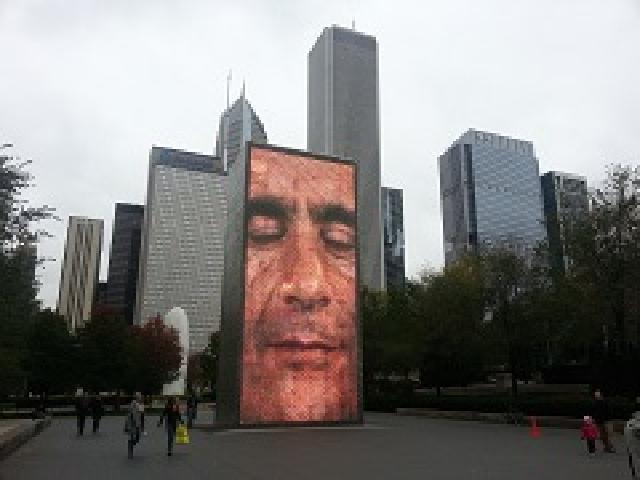1 Day Chicago City Landmarks Tour