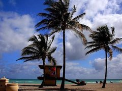 6-Day Miami, Everglades, West Palm Beach, Orlando Theme Park Tour from Miami/Fort Lauderdale