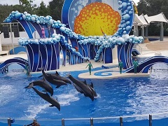 9-Day Miami, Key West, Orlando Theme Park Tour from Miami/Fort Lauderdale with Airport Transfers