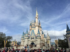 12-Day Orlando Theme Park, Miami, Key West Tour from Orlando with Airport Transfer