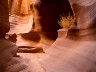 1-Day Antelope Canyon X and Horseshoe Bend Tour from Las Vegas
