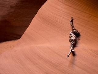 2-3 Hours Antelope Canyon X Photography Tour