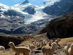 15-Day Bolivia and Peru tour from La Paz, end in Lima