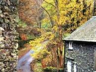 1 Day Lake District at Your Own Pace Tour from London