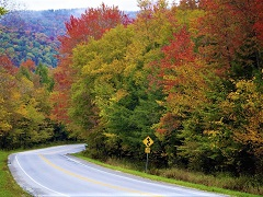 6-Day Boston, Maine, White Mountains Fall Foliage Tour from New York
