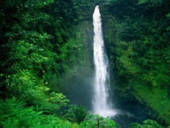 7-Day Hilo, Pearl Harbor, Mini Circle Island and Akaka North Shore Tour from Honolulu