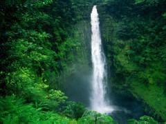 7日游-希洛-珍珠港-小環島-阿卡卡瀑布旅游團(檀香山出發)