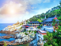 5-Day Seoul, Gangwon, Namiseom and Korea Tour from Seoul with Airport Transfer