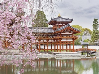 11-Day Seoul, Gangwon-do, Osaka, Kyoto and Shizuoka Tour from Seoul