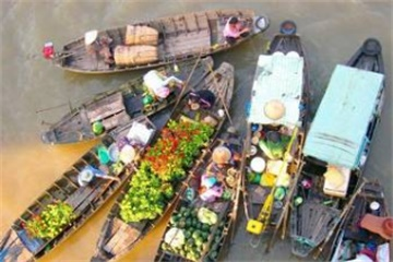 5-Day Ho Chi Minh City and Waterways of the South Tour from Ho Chi Minh City with Airport Transfers