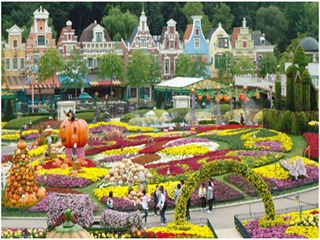 1-Day Everland Theme Park Tour