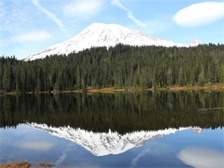 9-Day Seattle, Mt. Rainier National Park, Yellowstone, Coeur d'Alene Tour from Seattle with Airport Transfers