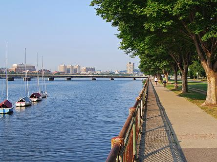 1-Day Boston City Sightseeing In-depth Tour