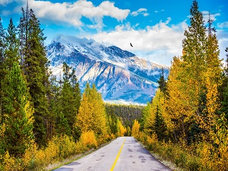 2-Day Fairmont Winter C Line Mini Tour From Calgary or Banff