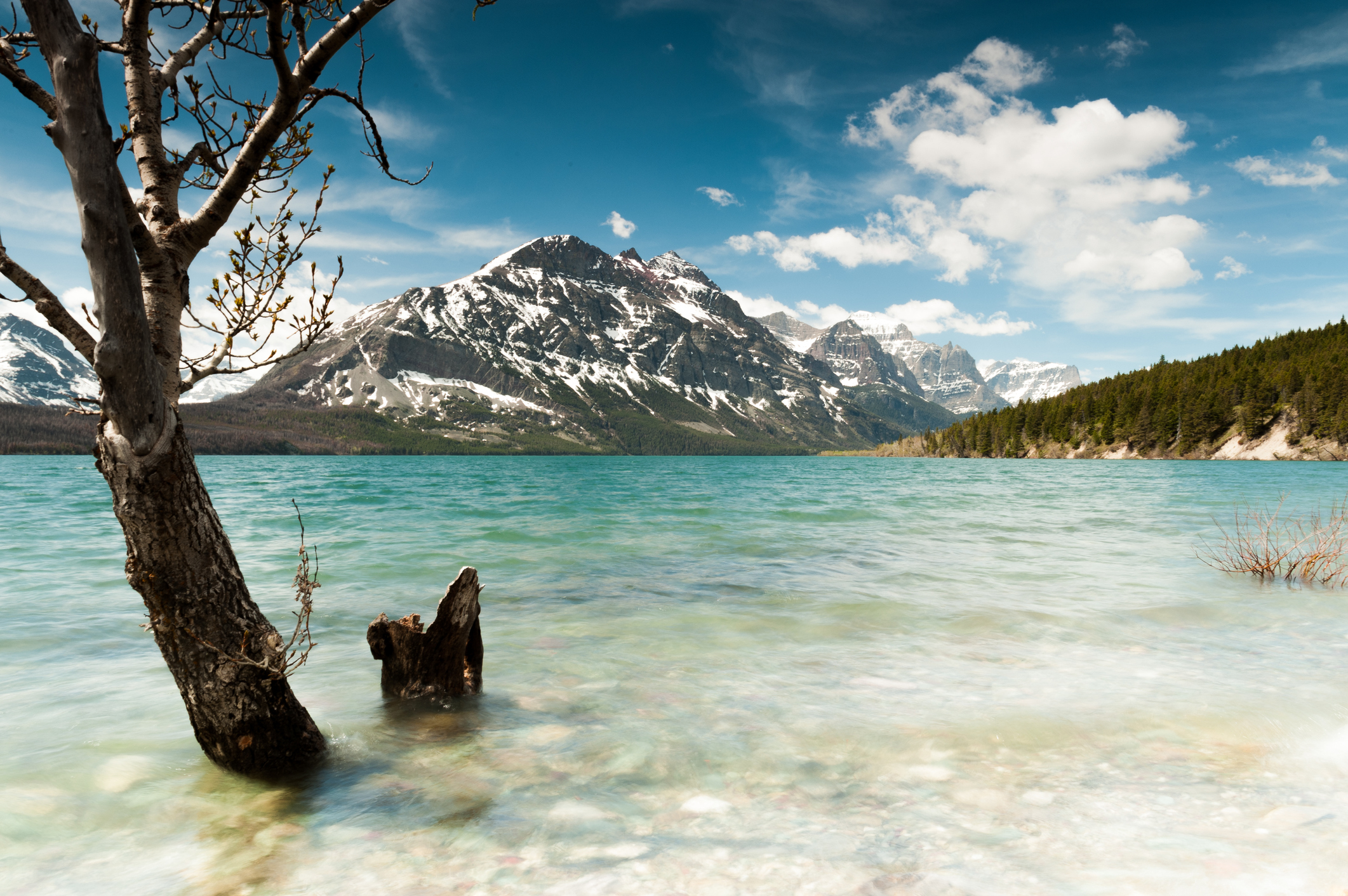 7-Days Victoria, Rocky Mountains, Icefild, Banff, Calgary Tour from Vancouver