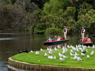 Melbourne Highlights with River Cruise from Melbourne