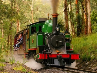 Puffing Billy with Australian Wildlife