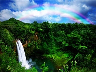1-Day Heavenly Hana Tour (Island Hopping from Oahu to Maui)
