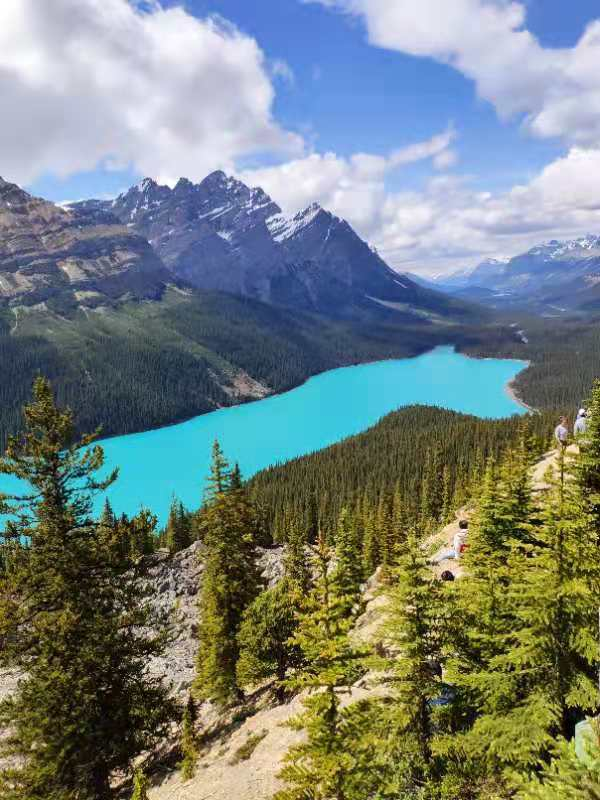 2-Day Rocky Mountain, Banff National Park, Banff Town, Lake Louise, Yoho National Park Tour from Calgary