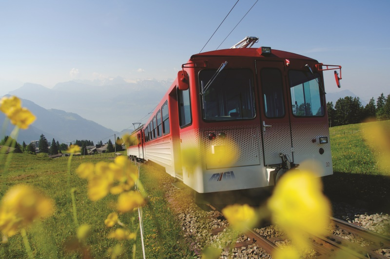 1-Day  Rigi - Queen of the Mountains tour from Lucerne