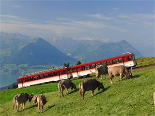1-Day  Rigi - Queen of the Mountains tour from Zurich