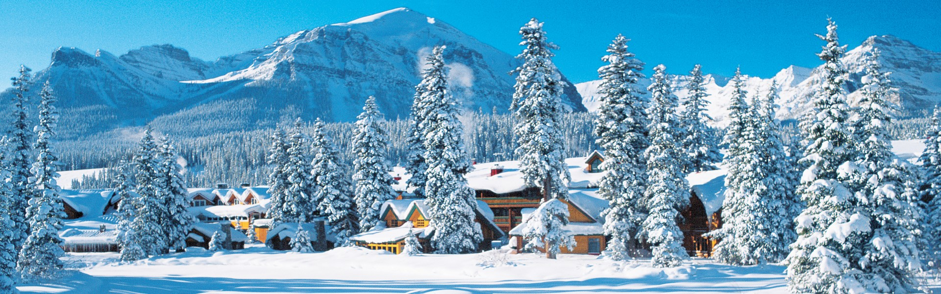 1-Day Winter Lake Louise and Yoho National Park Tour from Calgary