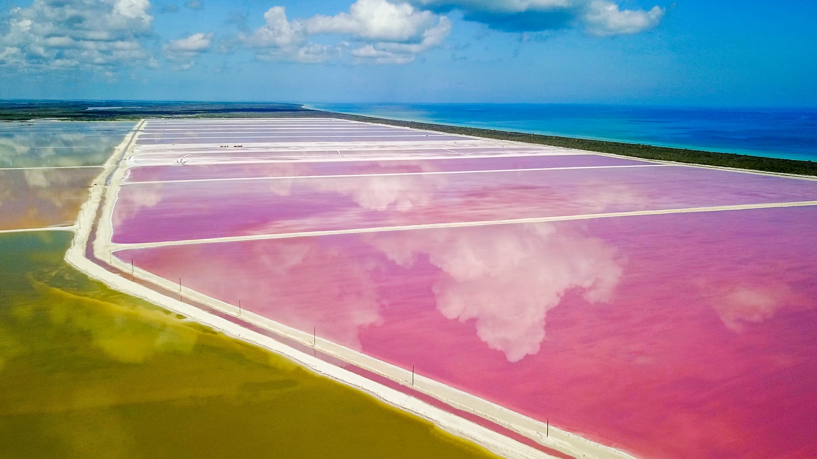 1-Day Las Coloradas Pink Lake, Cenote tour from Cancun