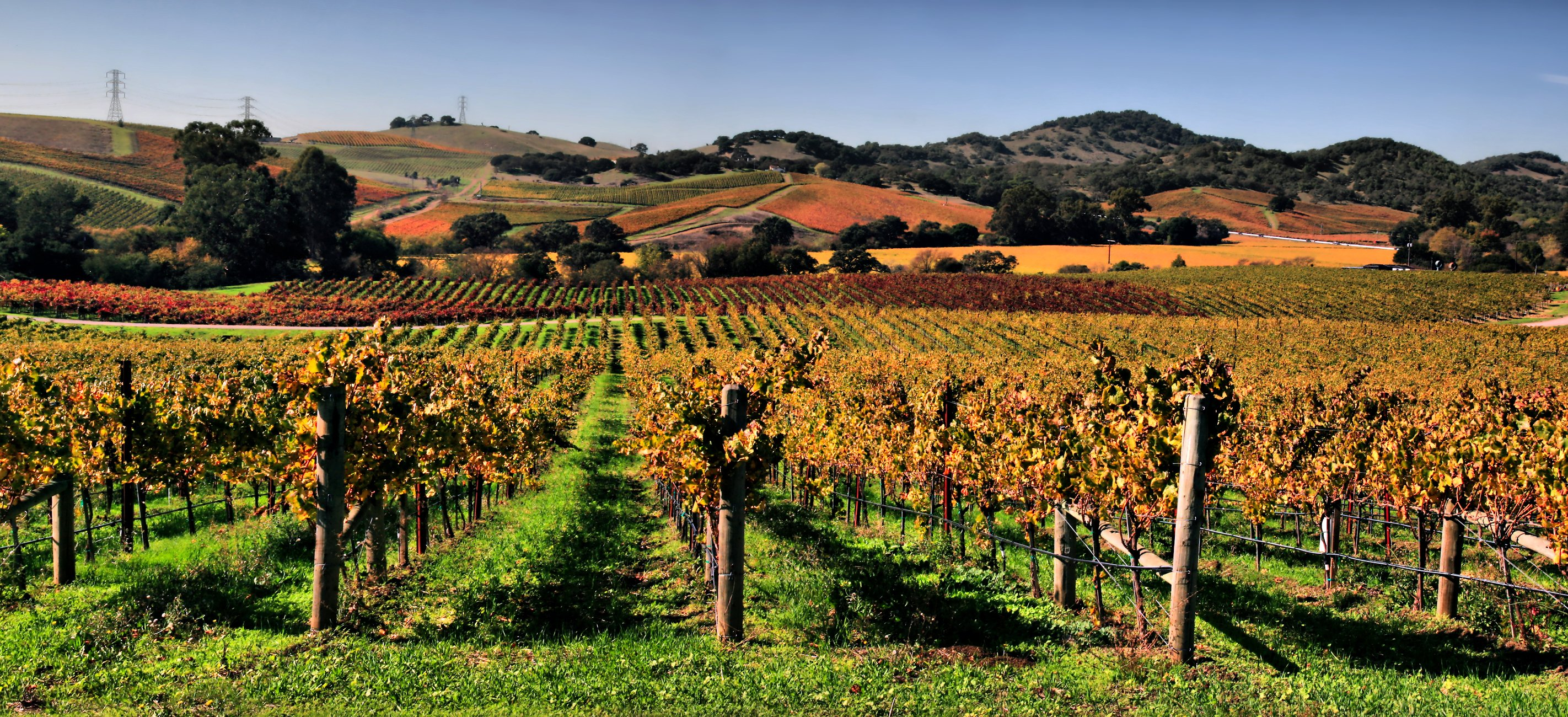 3-Day Napa Valley, Redwood National Forest, Klamath Falls, Oregon Tour from San Francisco