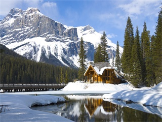 1-Day Lake Louise and Abraham Lake Tour from Calgary